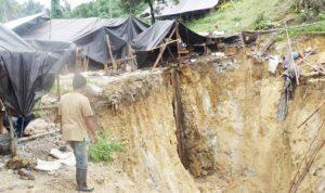 >> Tambang emas di Desa Tatelu.